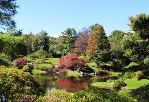Asticou Gardens Northeast Harbor Maine